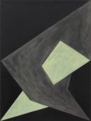 Saltus I, 2009, acrylic, pigments on cotton, 60 x 45_2009