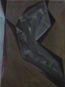 Saltus VI, 2009, acrylic, pigments on canvas, 60 x 45