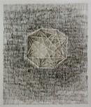 ´Die Belagerung I (Der Garten)`, 2013, ink on portvin on paper, 24,5 x 40,7 cm